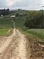 Agrotechnika duchowa, czyli ugory podobieństwa