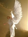 Powietrzne ciała aniołów