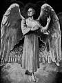 O Aniołach - za mało czy za dużo?