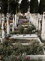 Cmentarz na samotność